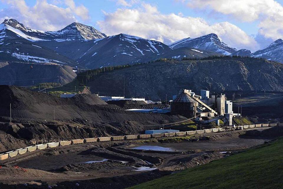 煤炭行业有毒有害beplay手机客户端下载解决方案